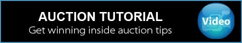 Auction Video of Capital Online Auctions