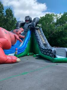 Kongo Crazy 28ft Triple Slide